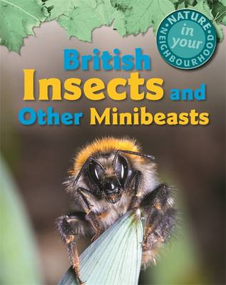 British Insects and Other Minibeasts by Clare Collinson