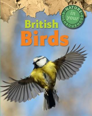 British Birds by Clare Collinson