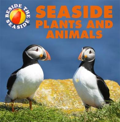 Seaside Plants and Animals by Claire Hibbert