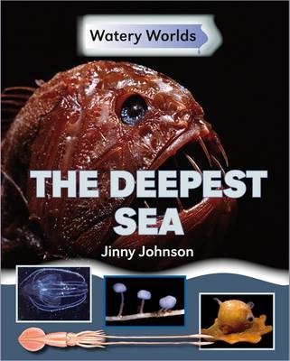 The Deepest Sea by Jinny Johnson