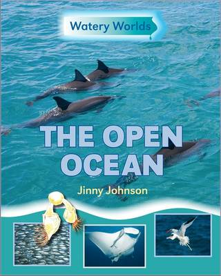 The Open Ocean by Jinny Johnson