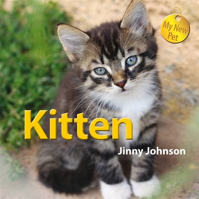 Kitten by Jinny Johnson