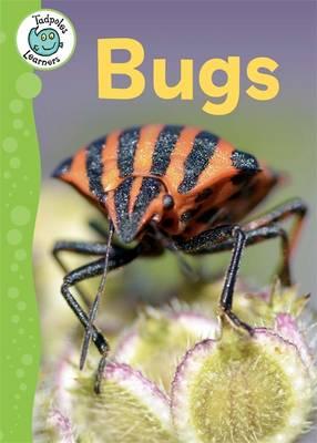 Bugs by Annabelle Lynch