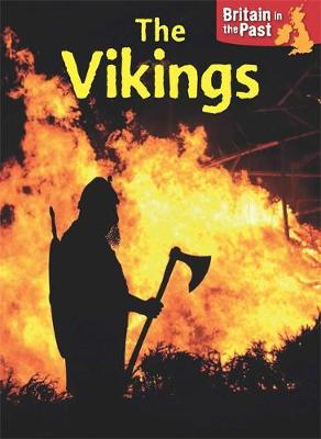 Vikings by Moira Butterfield