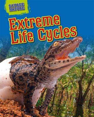 Extreme Life Cycles by Louise Spilsbury