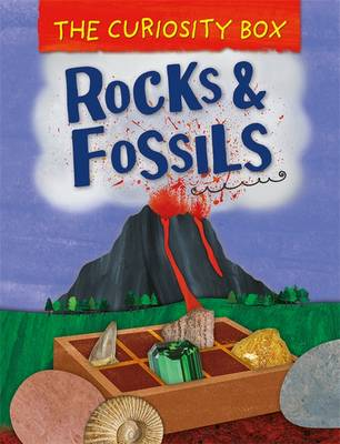 Curiosity Box: Rocks and Fossils by Peter Riley
