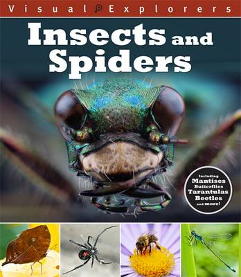 Insects and Spiders by Paul Calver, Toby Reynolds