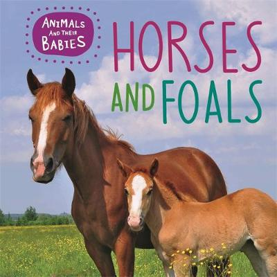 Horses & Foals by Annabelle Lynch, Franklin Watts