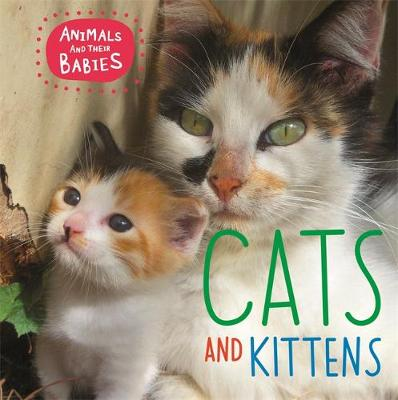Cats & Kittens by Annabelle Lynch