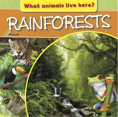 Rainforests by