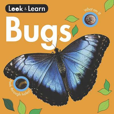 Bugs Board Book by
