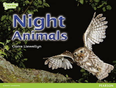 Stepping Stones: Night Animals - Green Level by Claire Llewellyn