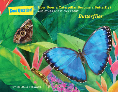 How does a caterpillar become a butterfly? And other questions about butterflies by Melissa Stewart