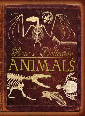 Bone Collection Animals by Rob Colson