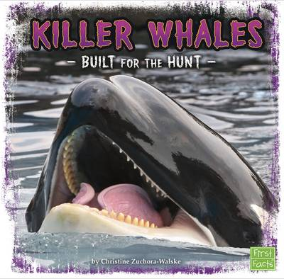 Killer Whales Built for the Hunt by Christine Zuchora-Walske