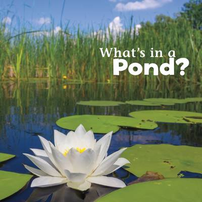 What's in a Pond? by Martha E. H. Rustad