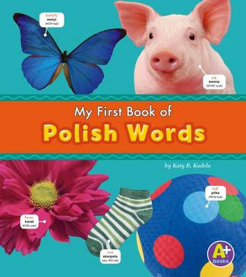 Polish Words by Katy R. Kudela