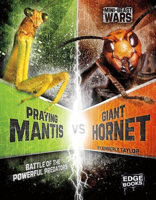 Praying Mantis vs Giant Hornet Battle of the Powerful Predators by Alicia Z. Klepeis