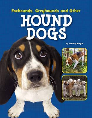 Foxhounds, Greyhounds and Other Hound Dogs by Tammy Gagne