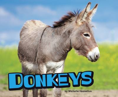 Donkeys by Michelle M. Hasselius
