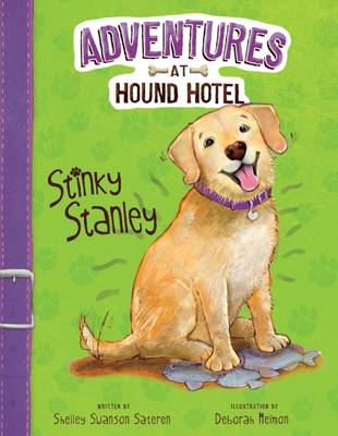 Stinky Stanley by Shelley Swanson Sateren
