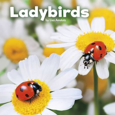 Ladybirds by Lisa J. Amstutz