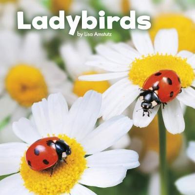 Ladybirds by Lisa J. Amstutz