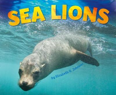Sea Lions by Elizabeth R. Johnson