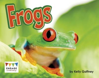 Frogs by Kelly Gaffney