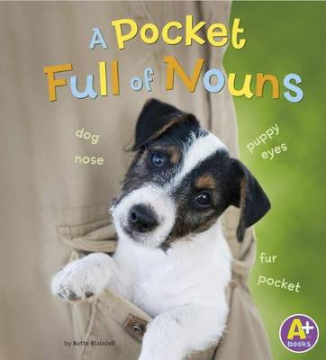 Pocketful of Nouns by Bette Blaisdell