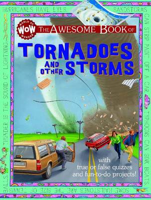Tornadoes & Other Storms by Kate Petty