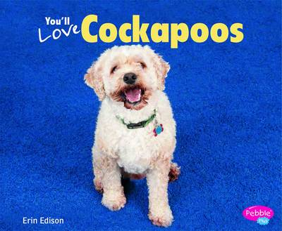 You'll Love Cockapoos by Erin Edson
