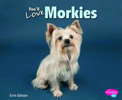 You'll Love Morkies by Erin Edson
