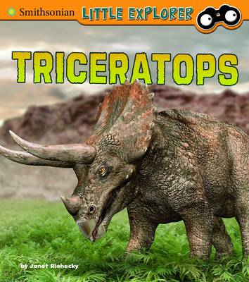 Triceratops by Janet Riehecky