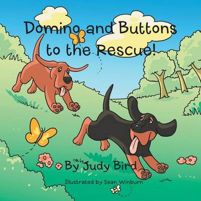 Domino and Buttons to the Rescue! by Judy Bird