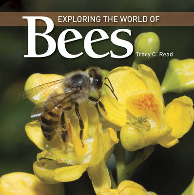Exploring the World of Bees by Tracy C. Read
