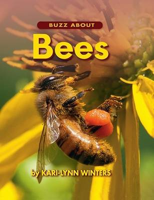 Buzz About Bees by Kari-Lynn Winters