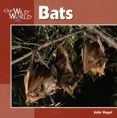 Bats by Julia Vogel