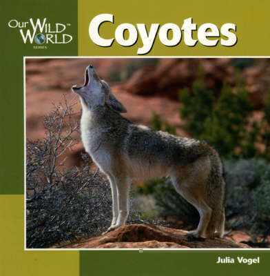 Coyotes by Julia Vogel