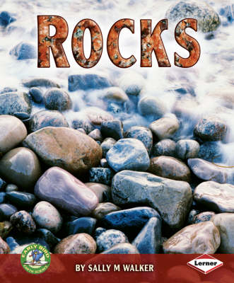 Rocks by Sally M. Walker