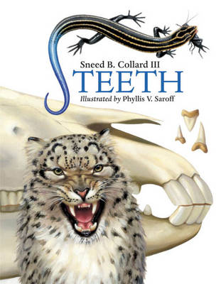 Teeth by Sneed B. Collard III