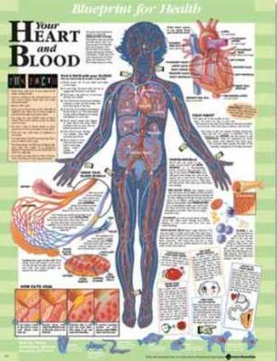 Blueprint for Health Your Heart and Blood Chart by Anatomical Chart Company