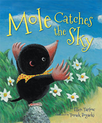 Mole Catches the Sky by Ellen Tarlow