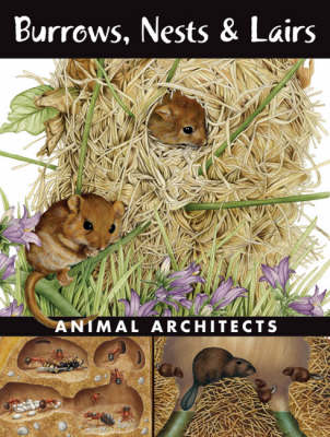 Burrows, Nests and Lairs Animal Architects by Ada Spada