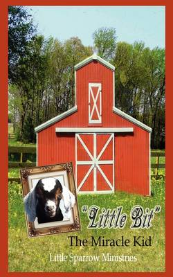 Little Bit the Miracle Kid by Judy H Farris-Smith