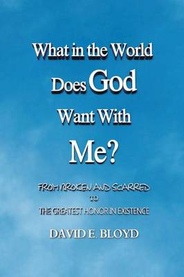 What in the World Does God Want with Me? From Broken and Scarred to the Greatest Honor in Existence by David E Bloyd