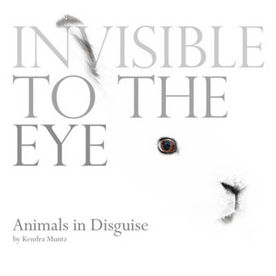 Invisible to the Eye: Animals in Disguise by Kendra Muntz, Bright Connections Media