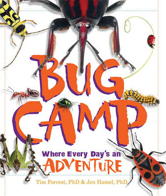 Bug Camp Where Every Day's an Adventure by Jennifer Hamel