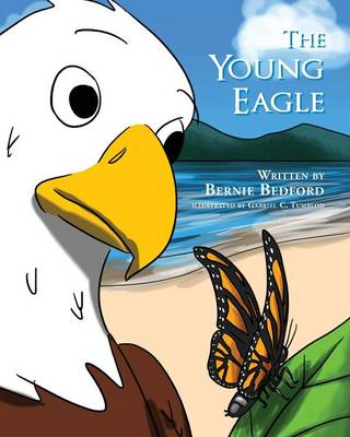 The Young Eagle by Bernie Bedford
