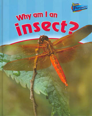 Why am I an Insect? by Greg Pyers